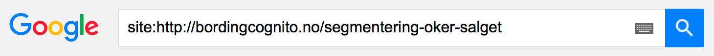 Test søkbarheten i Google